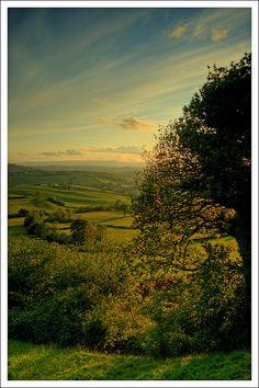Evening, Near Devauden, Wales
