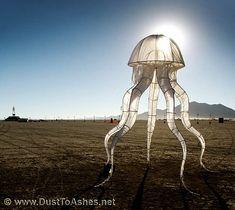 Outlines of medusa art installation