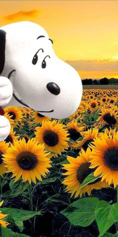 Snoopy The Dog, Snoopy Love, Charlie Brown And Snoopy, Snoopy And Woodstock, Snoopy Images, Snoopy Pictures, Kids Cartoon Characters, Cartoon Kids, Minions