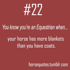 Your horse has more blankets... True for mine...