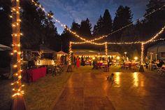 Amphitheatre of the Redwoods   Wedding and Events Venue   Santa Cruz, CA     Forest Wedding