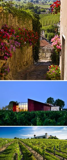 Stoke your wanderlust and bring joy to your inner wine lover with these STUNNING wine spots.