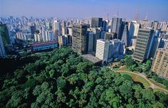 São Paulo city aerial view , near Avenida Paulista ( Paulista avenue,is the main avenue of São Paulo). From this picture you can see some important tourist attractions like MASP art museum ( the lowest building painted in red on your left) and the green area is the Trianon Park.  MASP e Trianon vista aérea.