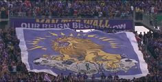 Iron Lion Firm and The Ruckus (Orlando City SC) MLS