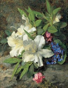 "Henri Fantin Latour ""White Azaleas"" oil on canvas 24 x 19 cm Dover Collections, Kent, UK White Azalea, Henri Fantin Latour, Cool Paintings, Floral Paintings, Still Life Art, Portraits, Art Uk, Art For Art Sake, Watercolor Flowers"