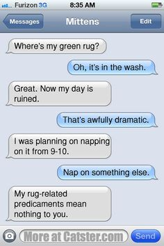 Texts From Mittens: The Missing Green Rug Edition | Catster