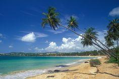 humacao+puerto+rico   Filename: Palmas del Mar, Humacao, Puerto Rico-aeamador00618f_5.jpg