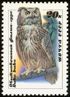 Eurasian Eagle-Owl stamps - mainly images - gallery format Eurasian Eagle Owl, Long Eared Owl, World Birds, Paper Owls, Art Folder, Wise Owl, Owl Bird, Vintage Stamps, Stamp Collecting