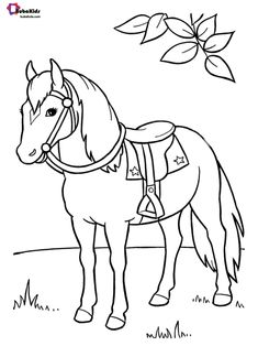 651 Best Animal Coloring Pages images in 2020 | Animal coloring ...