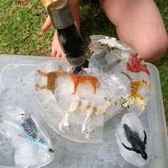 fun ideas for water play. I love this idea of freezing animals in ice... so funny!
