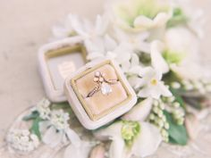 Trumpet and horn engagement ring and mr and Mrs. Box - Destination Wedding Photographer — Erin Stubblefield Weddings and Portraiture | Documentary Photojournalist and St. Louis Wedding Photographer