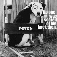 Petey - The little Rascals
