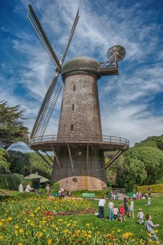 Golden Gate PArk - Top Things to do in San Francisco with Kids