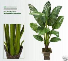 5' Banana Artificial Tropical Tree Silk Plant Palm 625 Indoor Palms, Silk Plants, Tropical Houses, Banana, Decor Ideas, Amazon, Kitchen, Home Decor, Tropical Homes
