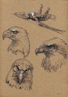 eagle, Floris van der Peet on ArtStation at Bald eagle, Floris van der Peet on ArtStation at . -Bald eagle, Floris van der Peet on ArtStation at . Bird Drawings, Animal Drawings, Pencil Drawings, Pencil Art, Animal Sketches, Drawing Sketches, Drawing Ideas, Aigle Animal, Eagle Drawing