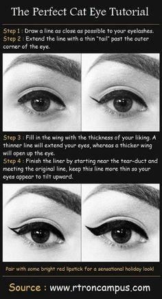 I love this! Cat eyeliner looks amazing.