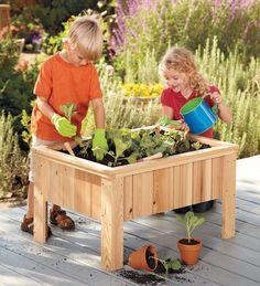 My First Garden Child-Sized Cypress Planter