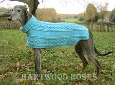 Hartwood Roses: Crocheted Dog Sweater for the Greyhounds Rock Silent Auction