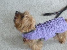 Crochet dog sweater...FREE PATTERN
