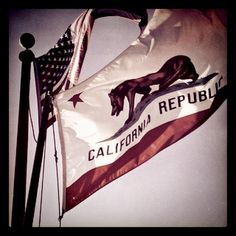 love the CA flag