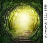 Road in magic dark forest by Elena Schweitzer, via Shutterstock