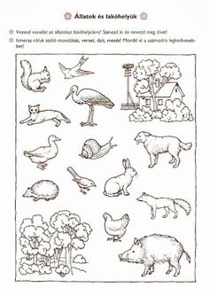 Tág a világ természetismeret játékosan Abc Worksheets, Kindergarten Worksheets, Forest Animals, Farm Animals, Cicely Mary Barker, Christmas Drawing, Activity Sheets, Preschool Learning, Toddler Activities