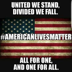 United we stand, divided we fall! All American lives matter! This is a nice sentiment, but how realistic is it really? If only it could be this way, but liberals can't seem to get on board. I Love America, God Bless America, America Pride, Divided We Fall, American Life, American Flag, American Quotes, American Soldiers, United We Stand