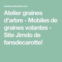 Atelier graines d'arbre - Mobiles de graines volantes - Site Jimdo de fansdecarotte!