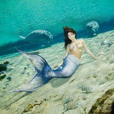 Mysterious and mythical creatures of. Mermaid Cove, Mermaid Lagoon, Mermaid Fairy, Fantasy Mermaids, Real Mermaids, Mermaids And Mermen, Fantasy Creatures, Mythical Creatures, Sea Creatures