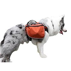 f8e52a954b492 660 Best Dog Packs images in 2019 | Dogs, Dog carrier, Pets