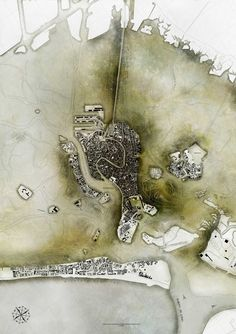 While the city of Venice fights a battle against the sea, the Venetian lagoon fights a different battle with invasive algae. This map by Christopher Christophi shows algae growth around the islands of the lagoon, 2011