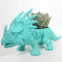 super rad dinosaur planters come with different types of succulents to plant in them.