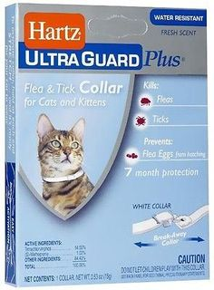 Hartz Ultraguard Plus Flea  Tick Collar for Cats and Kittens Fresh Scent -- This is an Amazon Affiliate link. Find out more about the great product at the image link.