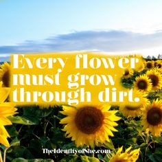Your Wednesday motivation to keep going because every flower must grow through dirt. Know that there is a better outcome to whatever you are struggling with. You got it boo! Self Thought, Meditation Retreat, Wednesday Motivation, Self Realization, Body Love, Self Discovery, Taking Pictures, Friends In Love, Self Love