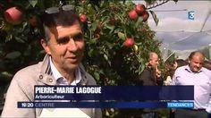 La pomme Ariane Les Naturianes est passée sur France 3 ! Découvrez le reportage !