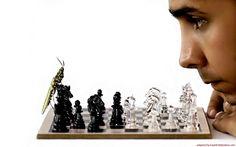 Bug chess