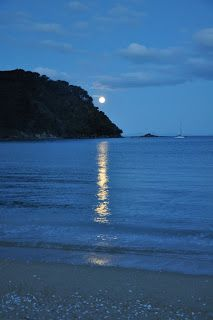 South Island, New Zealand, Beaches, Beautiful Places, Moon, Sea, Water, Outdoor, Scary