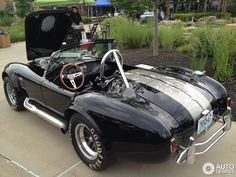 ac cobras - - Yahoo Image Search Results