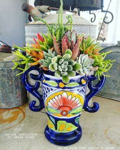 Nature Containers, water wise, succulent, cactus, cacti, succulents, succulent containers, succulent landscape, succulent love, #succulove , succulent tapestry, succulent arrangements, flowers, container garden, container arrangement, flower arrangment, w