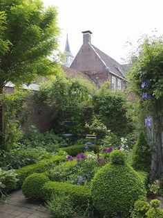 Landscaped Courtyard with topiary boxwoods, partierres, small trees, and flowers.