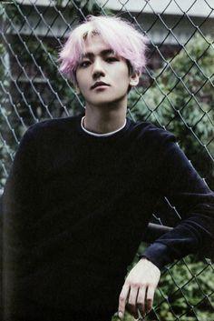 |EXO| BAEKHYUN #exo #baekhyun