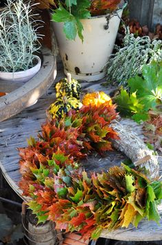 Fall leaf wreath with straw base. Blog is not in English, but there are step-by-step pictures. Preserve leaves with vegetable glycerine.