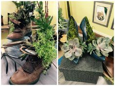Take an old pair of boots and turn them into a great succulent garden! For more great DIYs and crafts catch #homeandfamily weekdays at 10/9c on Hallmark Channel!