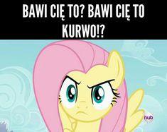 Mlp Memes, Wtf Funny, Best Memes, Pikachu, Wallpaper, Wattpad, Quote, Fictional Characters, Humor