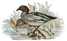 Australian Wood Ducks Cross Stitch Pattern http://www.artecyshop.com/index.php?main_page=product_info&cPath=1_5&products_id=562