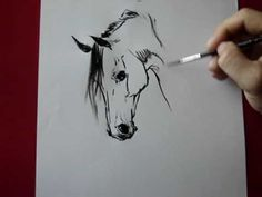 Horse head-how to draw by TORA