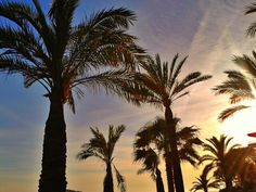 Santa Ponsa, Mallorca