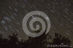 Stars Trails And Trees - Download From Over 29 Million High Quality Stock Photos, Images, Vectors. Sign up for FREE today. Image: 49559192