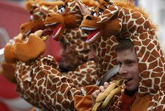 karneval 2015 in köln