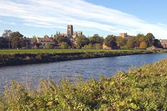 River banks Durham City, St Johns College, Durham Cathedral, River Bank, Ancestry, Banks, Countryside, Past, University